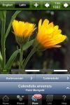 Fleurs en poche screenshot 1/1
