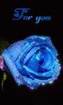 Blue Shining Rose Live Wallpaper screenshot 1/3