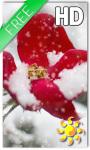 Winter Rose Live Wallpaper HD screenshot 1/2