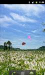 Dandelion Field Great Live Wallpaper screenshot 2/5