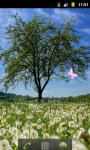 Dandelion Field Great Live Wallpaper screenshot 3/5