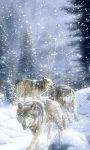 Snow Wolves Live Wallpaper screenshot 2/3