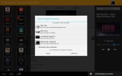 PlayTo Universal new screenshot 3/6