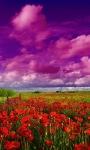 Colourful Cloud Live Wallpaper screenshot 1/3