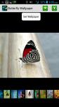 Beautiful Butterfly HD Wallpapers screenshot 1/4