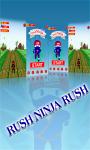 Rush Ninja Rush screenshot 2/6