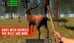 The Survivor Rusty Forest regular screenshot 5/6