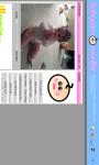 BabyCam Monitor DEMO screenshot 5/6