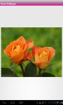Roses Wallpaper screenshot 2/6