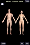 The Urogenital System screenshot 1/1