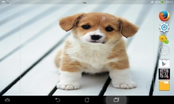 Ultimate Puppies Live Wallpaper screenshot 4/6