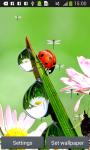 Ladybug Live Wallpapers screenshot 3/6