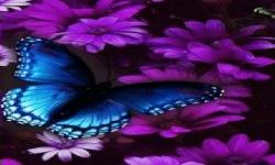 Purple Flower Butterfly Live Wallpaper screenshot 2/3