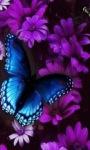 Purple Flower Butterfly Live Wallpaper screenshot 3/3