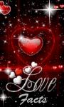 Love Facts 240x320 Touch screenshot 1/1