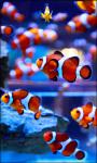 Amazing Fish in the sea images HD wallpaper screenshot 5/6