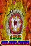 Celebration of Onam screenshot 1/3