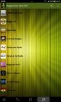 Reggae Music Radio Mini screenshot 1/6