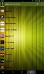 Reggae Music Radio Mini screenshot 2/6