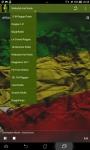 Reggae Music Radio Mini screenshot 4/6
