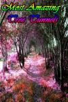 Most Amazing Tree Tunnels screenshot 1/3