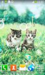 Kitten Live Wallpapers screenshot 3/6