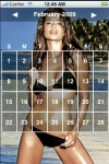 Swimsuit Calendar 2010 screenshot 1/1