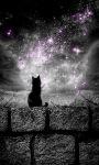 Night Cat Live Wallpaper screenshot 1/3