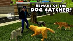 Stray Dog Simulator only screenshot 1/6