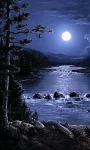 Night River Live Wallpaper screenshot 2/3