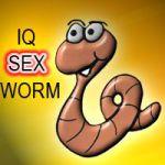 IQSexWorm Spanish screenshot 1/1