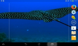 Marvels Of The Sea screenshot 2/6