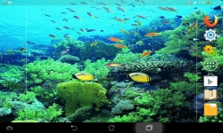 Marvels Of The Sea screenshot 3/6
