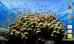 Marvels Of The Sea screenshot 4/6