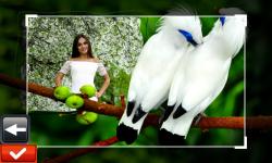 Birds Photo Frames screenshot 5/6