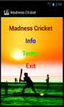 Madness Cricket screenshot 2/4