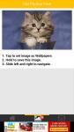 Cat Photos Free screenshot 3/6