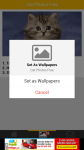 Cat Photos Free screenshot 4/6