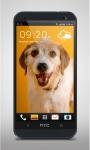 Happy Dog Live Wallpaper screenshot 1/3