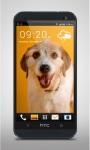 Happy Dog Live Wallpaper screenshot 2/3