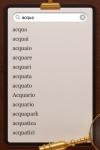 Big Italian Dictionary BigDict screenshot 1/1