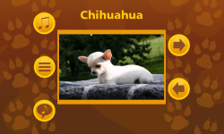 Learn More About Dog Breeds screenshot 4/6