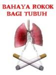 Bahaya Rokok Bagi Tubuh screenshot 1/1
