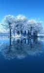 Free Amazing Winter Images Wallpaper screenshot 3/6