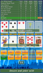 Video Poker by Toftwood Creations screenshot 3/5