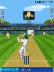 Cricket Championship Trophy_Free  screenshot 4/6