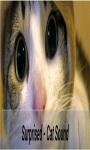 Talk Cat Translator screenshot 1/3