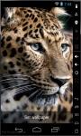 Leopard HD Live Wallpaper screenshot 2/2