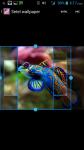Free Aquarium Wallpapers screenshot 3/4