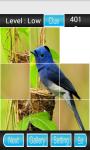 Bird Puzzle Games screenshot 1/3